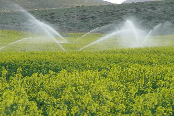 ۶۷میلیون مترمکعب آب در بخش کشاورزی آذربایجان غربی صرفه جویی شد