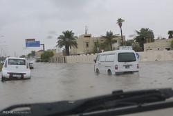 آمادگی شهرداریهای استان بوشهر برای جلوگیری از حوادث بارندگی