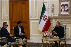 Iran highly regards diplomatic, economic ties with Ireland