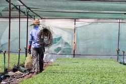 تسریع امور بهره برداران گام مهم تحقق حقوق شهروندی در بخش کشاورزی است