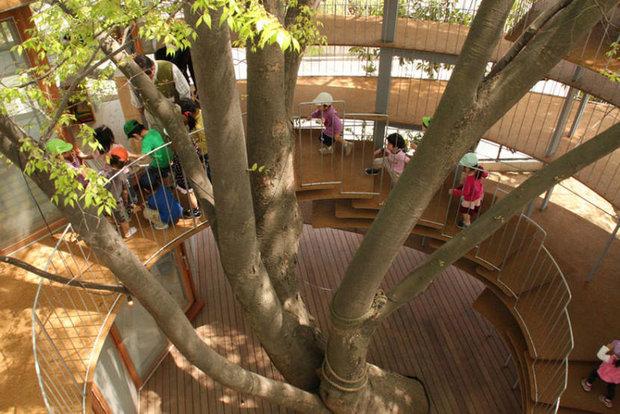 ساختن مهد کودک در یک درخت!