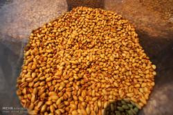 بخشنامه های ابلاغی در حوزه صادرات خشکبار روی زمین مانده است