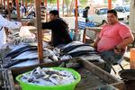 برخورد قانونی با عاملان فروش غیر بهداشتی آبزیان در بندرعباس