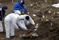 بوسنیا میں اجتماعی قبر دریافت