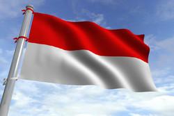 انڈونیشیا میں صدارتی محل پر گرنیڈ سے حملہ/ 2 اہلکار زخمی