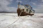 کشف ۲ میکروارگانیسم جدید در دریاچه ارومیه