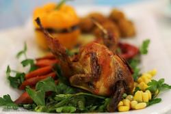 جشنواره طبخ غذا بیرجند