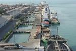 Bushehr prov. boosts food exports to Qatar