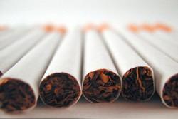 افزایش ۴۰ درصدی مصرف دخانیات در کشور/صادرکننده سیگار نباشیم