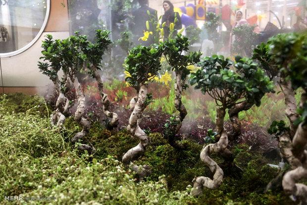 استخدام سنگ دوز ششمین نمایشگاه شهر ایده آل در جزیره کیش   ششمین نمایشگاه