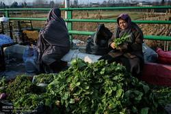 فیلم/ «روز بازار» در «کوچصفهان»