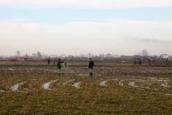 ۱۰ متخلف شکار و صید در مازندران دستگیر شدند