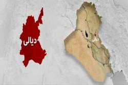 طرح ویژه مراسم اربعین در  استان دیالی عراق