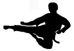 مسابقات «کونگ فو توآ» استان مرکزی با شناخت نفرات برتر پایان یافت