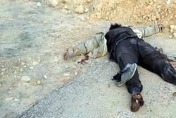 مقتل مسؤول الانتحاريين والاعدامات في داعش