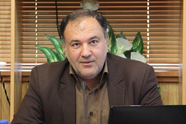رعایت شفافسازی در ارائه تسهیلات اشتغال در استان بوشهر