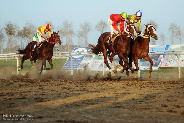 سباق الخيول في مدينة كنبد كاووس شمالي ايران