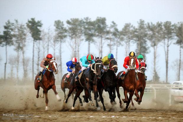 هفته 24 کورس اسب دوانی گنبد کاووس