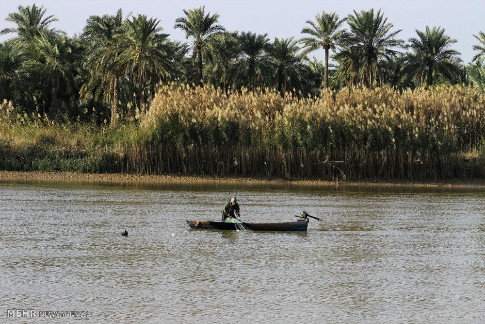 صید ماهی در رودخانه بهمنشیر آبادان