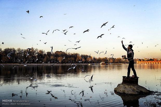 انعکاس / تصاویر ثبت شده از زندگی روزمره و محیط پیرامون.