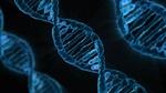 ۴ ژن سرطان زا کشف شد