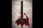 پوستر پل خواب