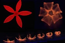 فیلم/ تحول شگرفی در علم پزشکی با چاپ گل های ۴ بعدی