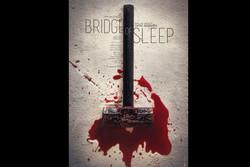 «پل خواب» و «فهرست مقدس» پروانه نمایش گرفتند