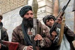 کشته شدن بیش از ۳۰۰ عضو طالبان در تحولات ۲۴ ساعت اخیر