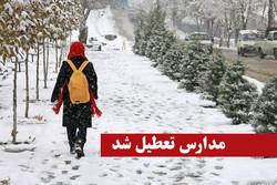 بارش برف مدارس نمین را تعطیل کرد/ مدارس سایر شهرها در شرف تعطیلی