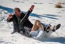 Winter recreation in Alborz Mountains