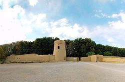 پاکسازی بناهای تاریخی مهریز/۴۴ قلعه تاریخی در مهریز شناسایی شد