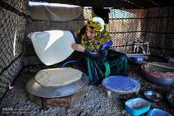 دومین هفته فرهنگی طرقبه شاندیز برگزار می شود