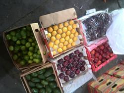 ۲۰۷تن محصولات کشاورزی قاچاق در هرمزگان کشف شد