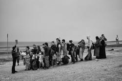 مهاجران سوریl