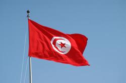 """رفض شعبي في تونس لقرار """"الداخلية العرب"""" بشأن حزب الله"""