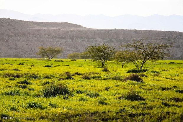 طبیعت روستای خالده