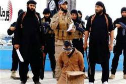 """صحيفة بريطانية تكشف عن مرجع """"داعش"""" في تبرير قطع الرؤوس"""