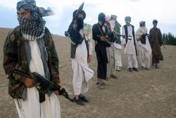 ۸۱ عضو طالبان در ایالت جوزان کشته شدند