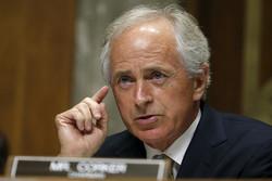 الكونغرس الأمريكي: الهدنة السورية تنفذ وفق شروط موسكو