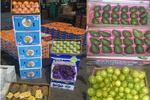 بازیگران واردات میوههای ممنوعه چه کسانی هستند؟