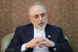 Iran expects UK to play influential role in re-building Arak heavy-water reactor