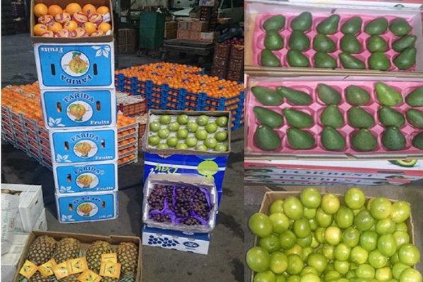 دفن ۲۷ تن میوه قاچاق در چاههای مخصوص