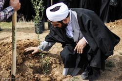 ۲ هزار اصله درخت در باغ قرآنی اردبیل کاشته میشود