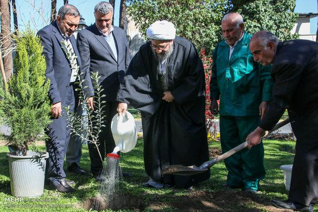 کاشت درخت توسط رییس قوه قضاییه