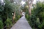 رخنمایی معماری اصیل ایرانی در باغهای تاریخی بیرجند