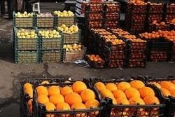 ذخیرهسازی میوه شب عید در استان زنجان ۳۰ درصد افزایش دارد