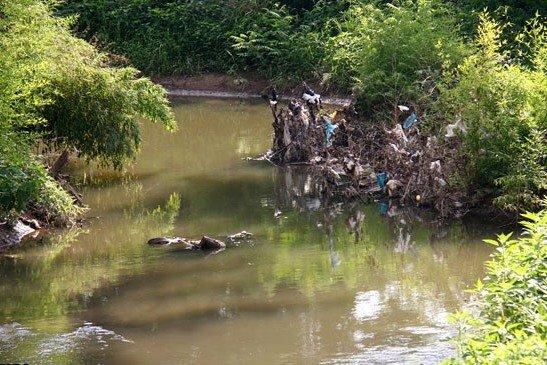 خشکیدن جریان زندگی در رودخانههای رشت/ مسئولان غافلند