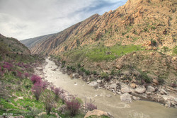First signs of Spring on Pol-e Dokhtar Road in Khorramabad