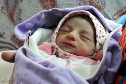 فاطمه و امیرعلی پرکاربردترین نام ها در کرمان هستند